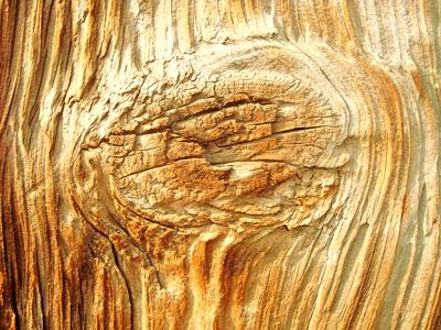 texture1-min