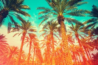 landscape-photo-4