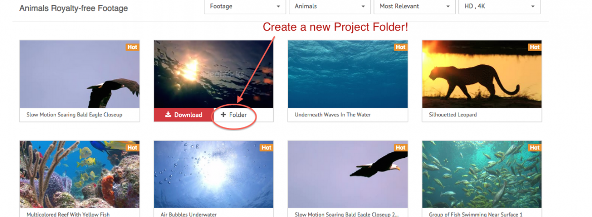 New Feature Announce: How To Create Project Folders