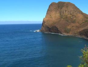 Happy Hawaii Day!