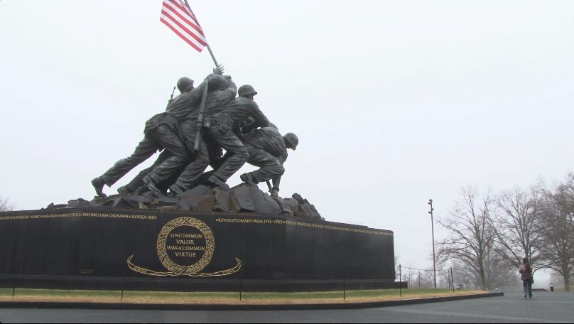 Veterans Day Video Gallery