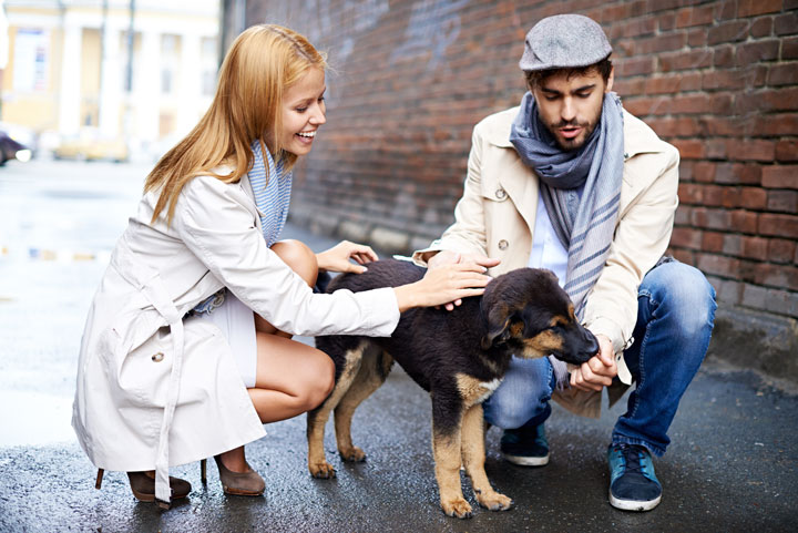 stock image of a couple and a dog