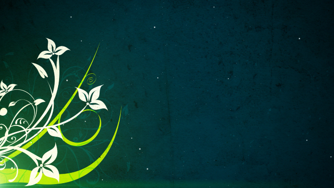 Green and White Flourishes and Flowers 2 Stock Photo