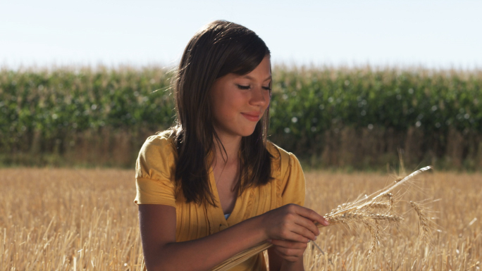 Girl in Sits in a Wheat Field in Front of Corn 3 Stock Photo