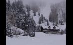 Isolated Cabin on Mountainside Near Aspen