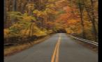 Road in Great Falls Park