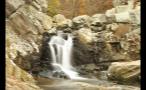 Little Rocky Waterfall in Woods