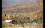 Farm Next to Colorful Autumn Forest