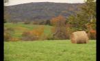 Hay Bale in Rural Meadow