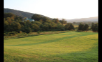 Beautiful Church and Meadow in Virginia