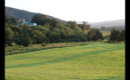 Green Meadow in Virginia