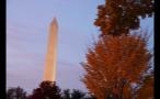 View of the Washington Monument Through the Trees