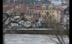 Tree Branches and River in Little German Town