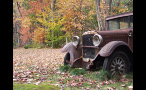 Front of Old Car in Field in Autumn