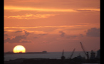 Cranes and Island Sunset