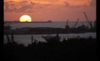 Island Cranes at Sunset