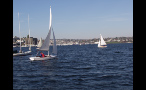 Sailboats in Puget Sound