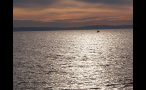 Sailboat in Puget Sound at Sunset