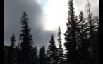 Trees and Cloudy Sky Near Vail