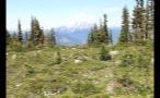 Whistler Mountain Top Meadow 2