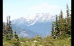 Snow Cap Mountains Beyond Forest