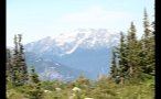 Snow Cap Mountains Beyond Forest 2