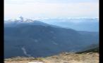Whistler Forest Landscape On Mountainside 2