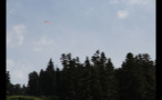 Parasailing Over Forest 2