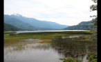 Whistler Marsh By Mountains