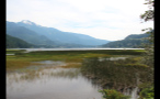 Whistler Marsh By Mountains 2