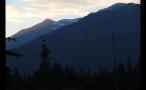 Getting Darker In Whistler Forest