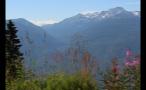 Tall Grass Mountain Landscape