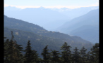 Treetops Facing Foggy Mountain Slopes 2