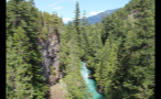 Whistler Forest With Blue River