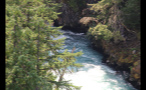 Rushing River Below Trees 3