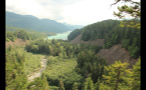 Bright Mountainous Forest