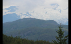 Trees Covering Canadian Mountains 2