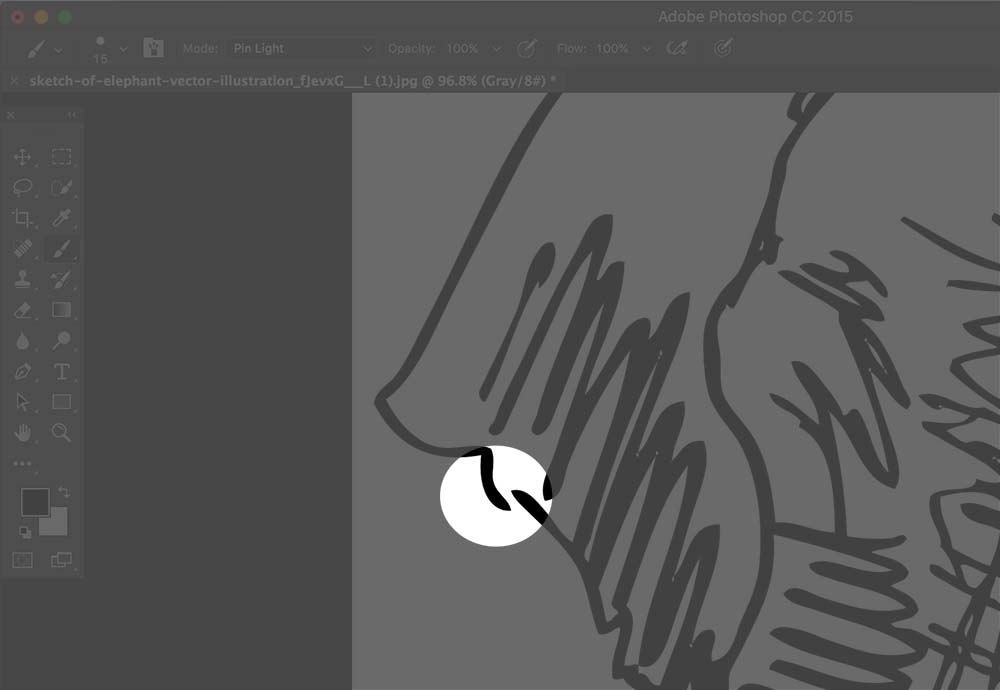 How to Color Illustrations in Photoshop -- Create with Storyblocks