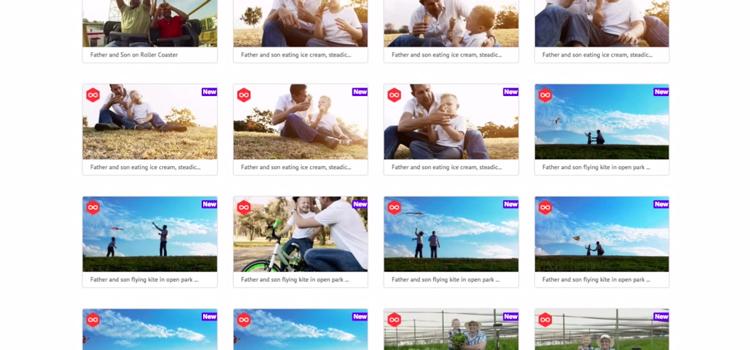 VideoBlocks Site Tutorial