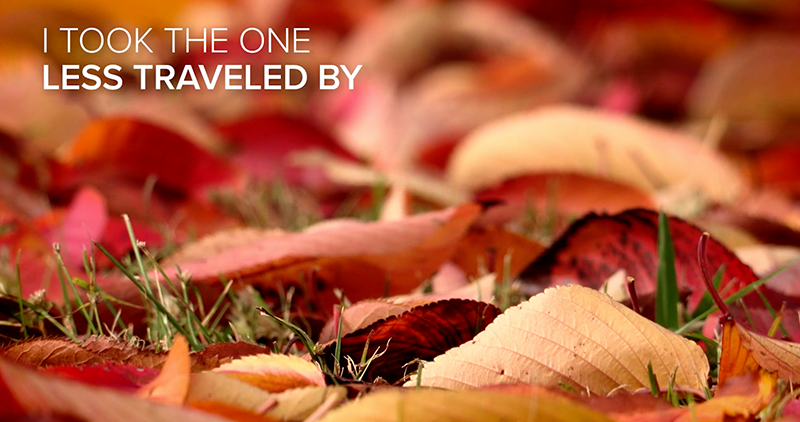 Take The Road Less Traveled: Explore Best-Selling Nature Footage of Changing Seasons