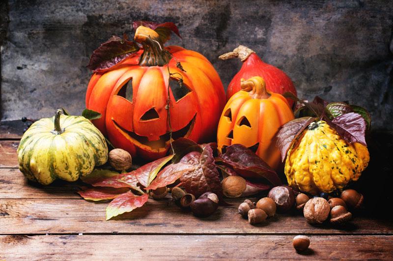 Halloween stock videos
