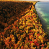 20 Jaw-Dropping Fall Foliage Clips