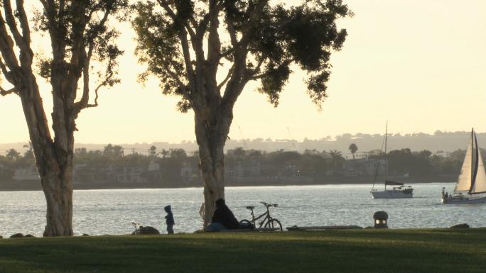 San Diego Public Park Trees Water Sailboat Sun Setting