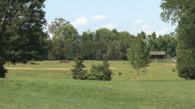 Open land used for farming at Mt. Vernon
