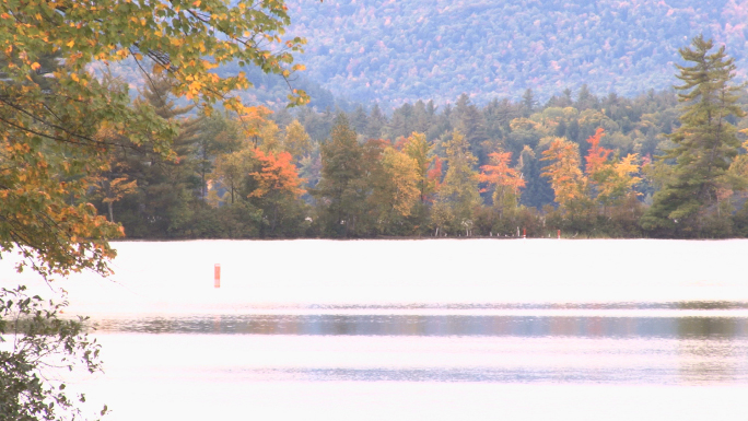 Colorful fall foliage on pond