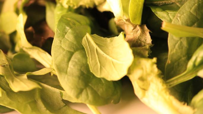 Bright Rotating Lettuce