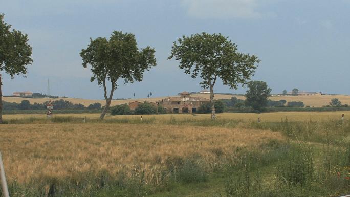 Tuscany Wheat and Farmstead