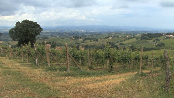 Tuscany Distant View near San Gimignano
