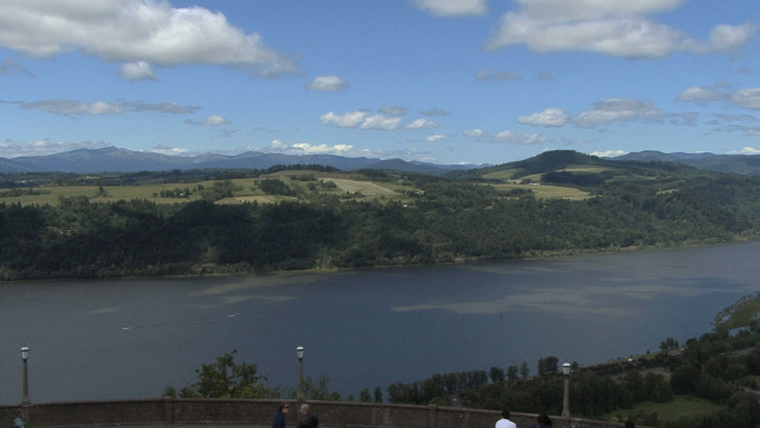 Columbia Gorge View Pans