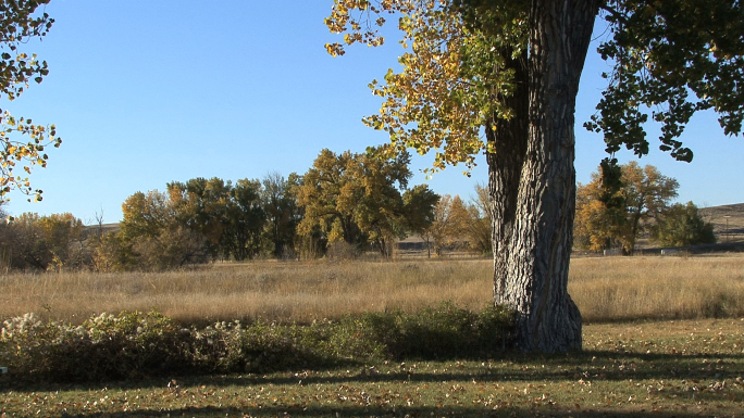 Wyoming Fall Landscape
